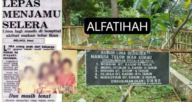 'Kisah Pilu 5 Beradik Mangsa Telur Ikan Kurau'..
