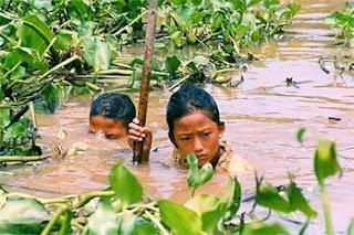 Foto de niños trabajando entre plantas y agua