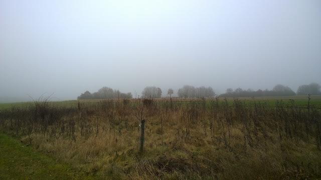 vom Nebel umzingelt (c) by Joachim Wenk