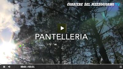 http://video.corrieredelmezzogiorno.corriere.it/pantelleria-nuovi-alberi-il-rogo-maggio-li-piantano-studenti/57c120ae-aa4e-11e6-a1c5-073381ca21f5
