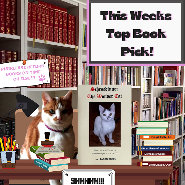 Amber's Book Reviews #169  What Are We Reading This Week ©BionicBasil® Schroedinger The Wonder Cat