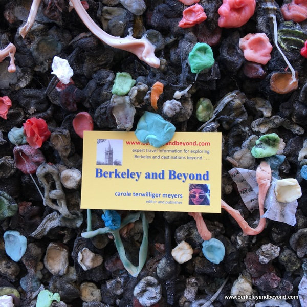 business card in Bubblegum Alley in San Luis Obispo, California