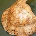 Εφορεία Αρχαιοτήτων Άρτας:Σε τάφο κλασικών/ελληνιστικών χρόνων ένα χελώνιο (καβούκι χελώνας)![βίντεο]