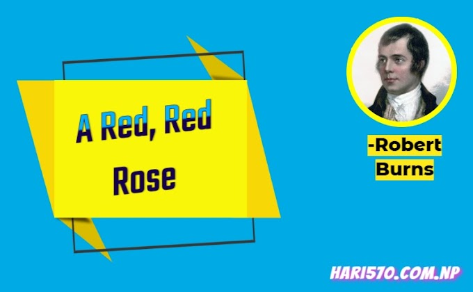 A Red, Red Rose by Robert Burns Exercise: Questions & Answers Class 11 English