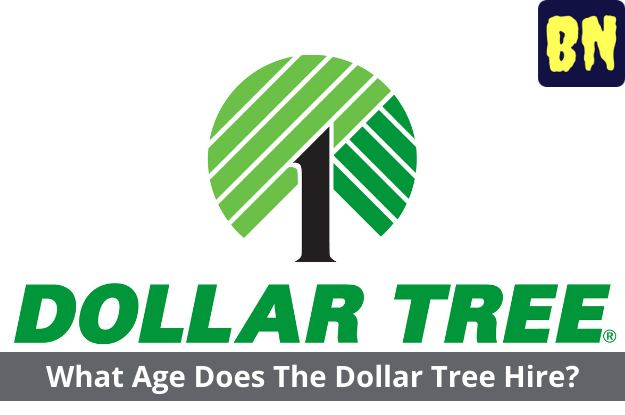 What Age Does The Dollar Tree Hire?