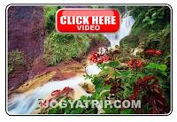 jogja trip travel,  Kembang soka Waterfall  jogyakarta, jogja tour driver, jogja tripadvisor