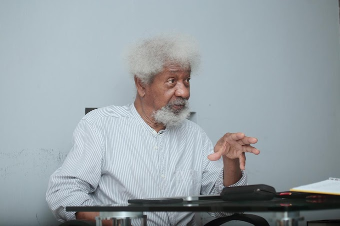 Don't Let School Kidnapping Become A Part Of Your Life - Wole Soyinka Warns Nigerians