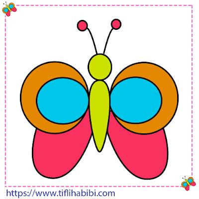 الفراشة 11