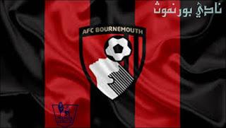 نادي بورنموث,الدوري الانجليزي,الدوري الإنجليزي الممتاز الفرق