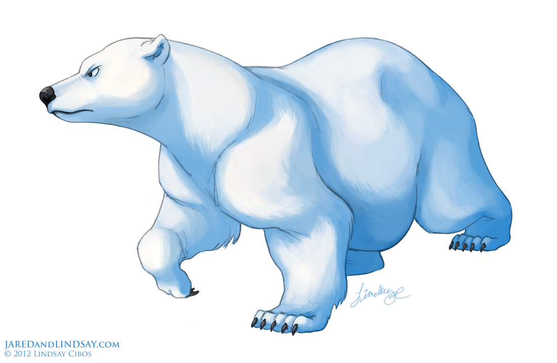 Lindsay Cibos' Art Blog: How To Draw A Polar Bear