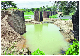 A Green Corridor From Central Tamilnadu To Central Kerala