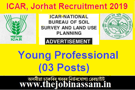 ICAR National Bureau of Social Survey and Land Use Planning, Jorhat Recruitment 2019: