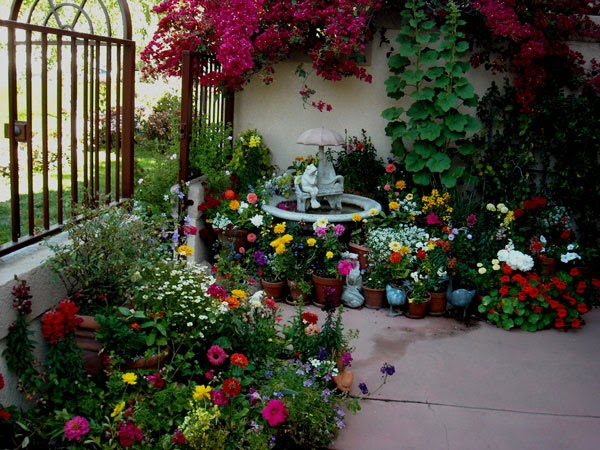 Apartment patio garden design ideas. smart money guide other ...