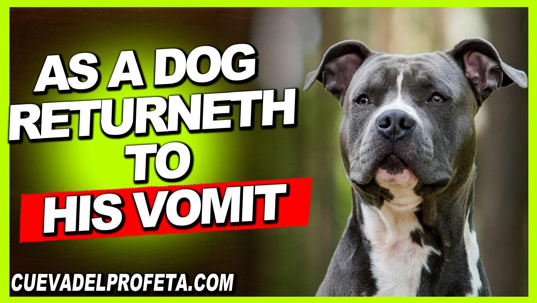 As a dog returneth to his vomit - William Marrion Branham