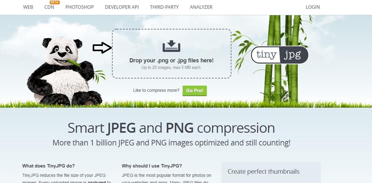 cara mengurangi ukuran foto online di tinyjpg