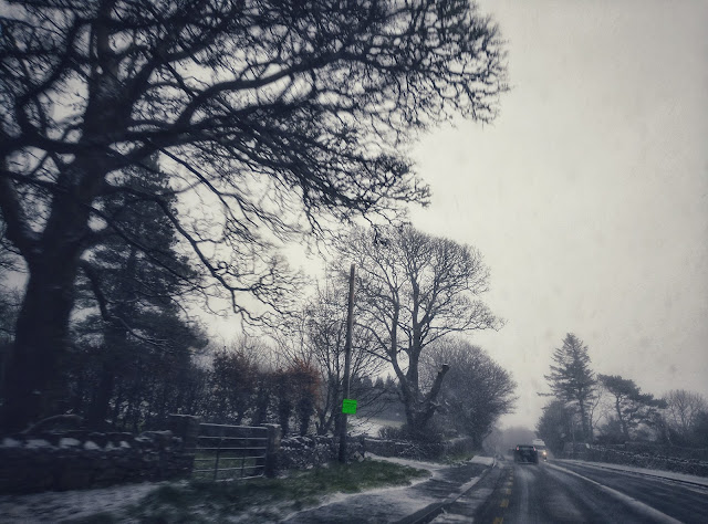 image taken from the car, snowing