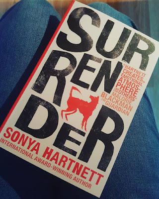 Surrender by Sonya Hartnett book cover