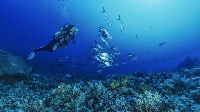 Η Μεσόγειος βρίσκεται σε καθεστώς υψηλού κινδύνου