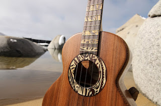 clases de ukulele en puebla