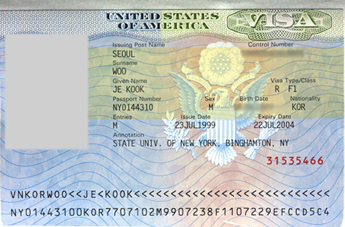 Usa Meaning Of Asterisks And Binary Mask In The Us Visa