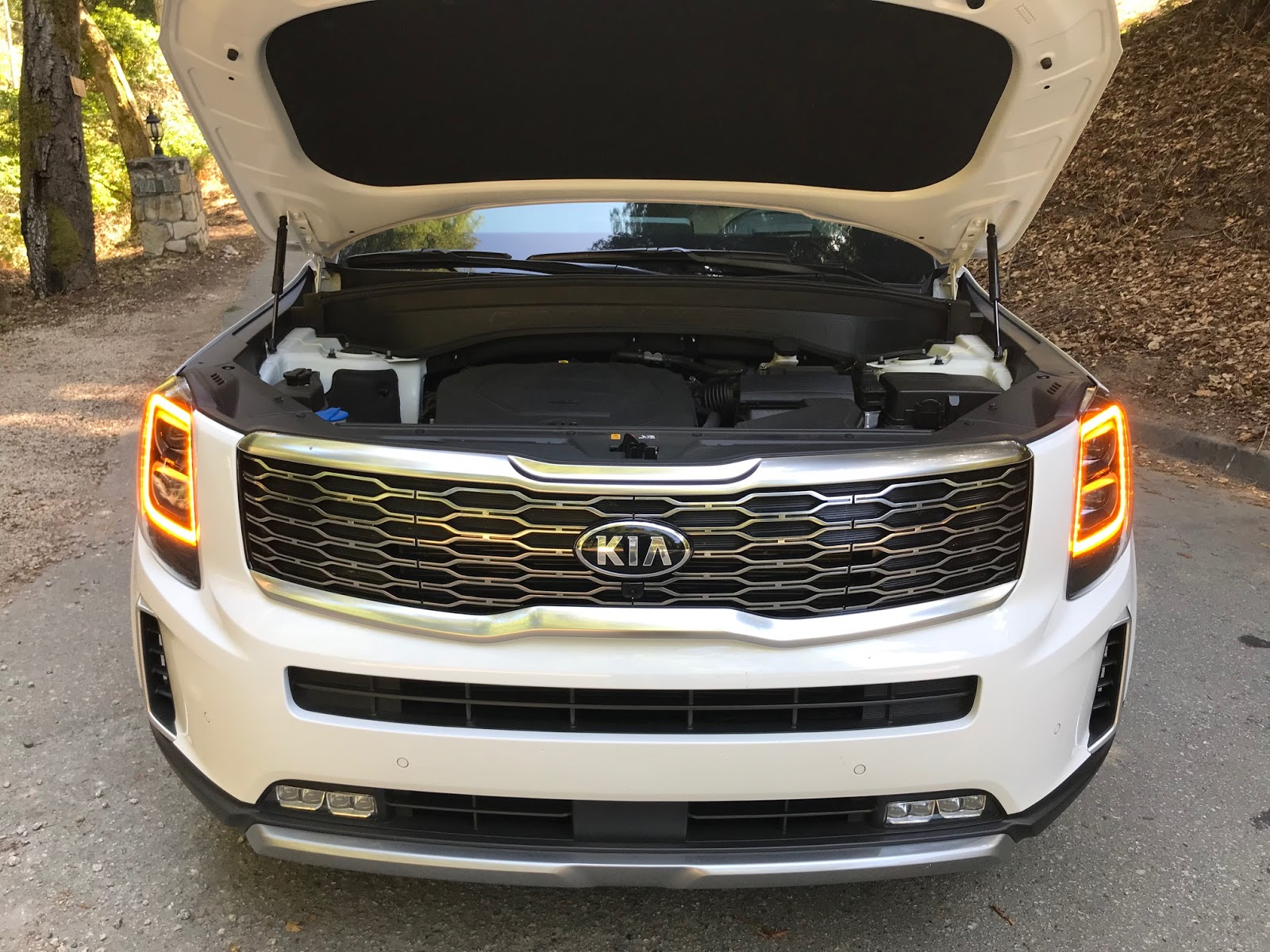 30 minutes with  the 2020 kia telluride sx v6 awd