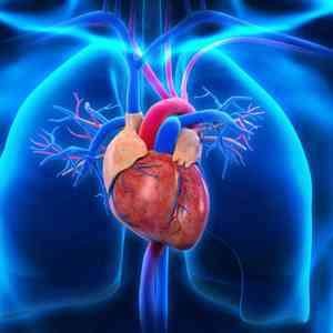 10 Causes of Heart Disease and Treatment and Ways to Stay Healthy