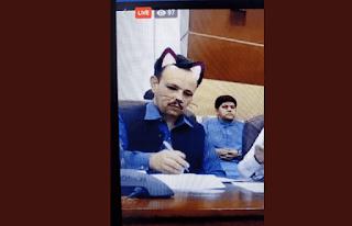 وزير باكستاني ينسى إيقاف تشغيل مرشح القط الفيسبوك أثناء نقل المؤتمر على Facebook Live