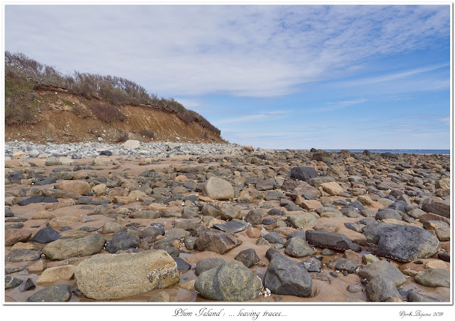 Plum Island: ... leaving traces...
