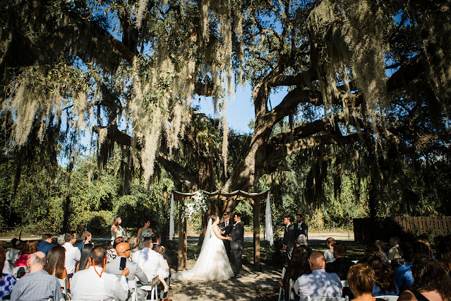 wedding ceremony under tree at Ever After Farms