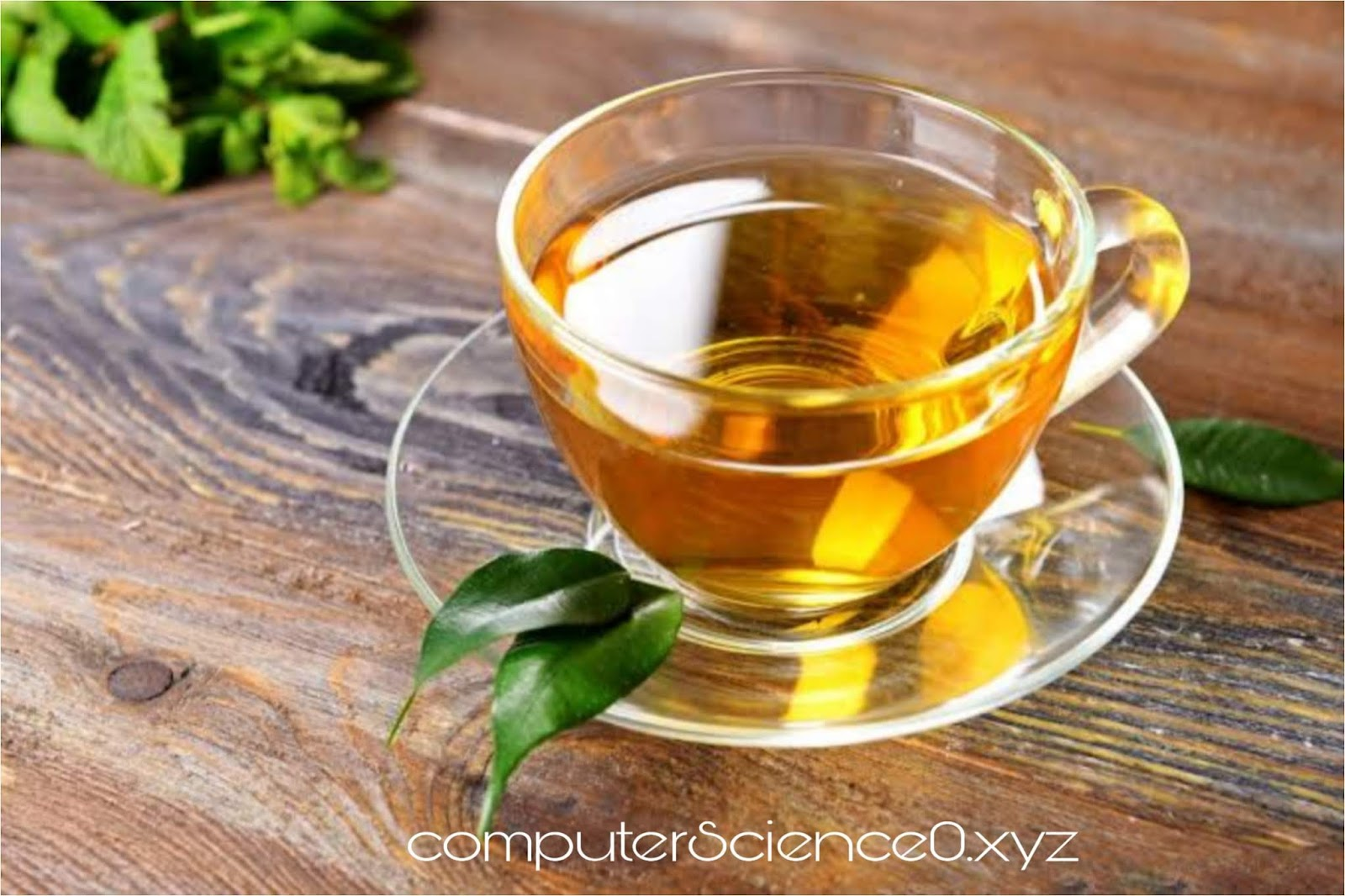 Tea to increase immunity power