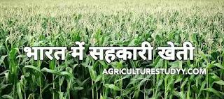 भारत में सहकारी खेती (सहकारी कृषि) का महत्व एवं कार्य-क्षेत्र, सहकारी खेती या सहकारी कृषि sahkari kheti/sahkari krishi, भारत में सहकारी खेती का विकास