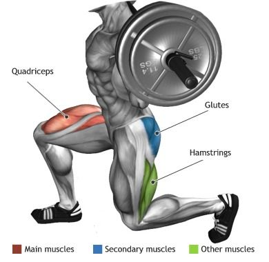 Static Dumbbell Lunges