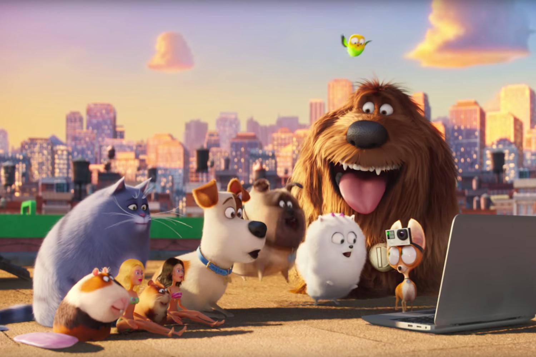 A Vida Secreta Dos Bichos O Filme Completo Dublado mata hari : pets: a vida secreta dos bichos