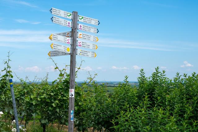 Grenzlandtour Schweigen-Rechtenbach   Bad Bergzaberner Land   Wandern Südliche Weinstraße 24