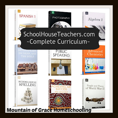 Mountain of Grace Homeschooling Review