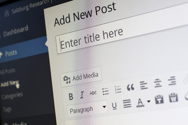 micro niche blog || Types of blogger