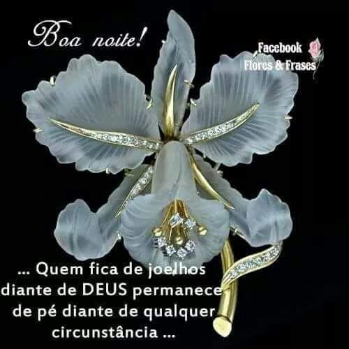Original Flores E Frases De Bom Dia