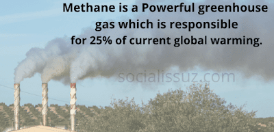 greenhouse gases are one of the significant reasons of global warming