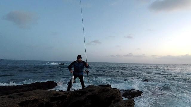 ROBALO - Pasión por la pesca de la robaliza 🎣🐟🐟🐟