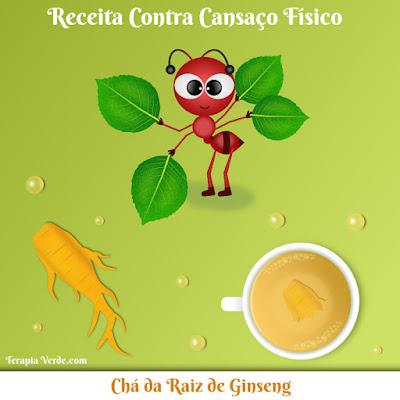 Receita Contra Cansaço Físico: Chá da Raiz de Ginseng