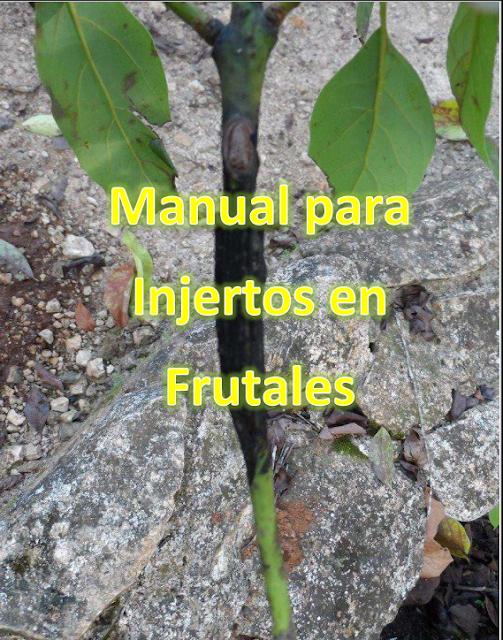 Libros de agronomia gratis en pdf manual para injertos en for Vivero agronomia
