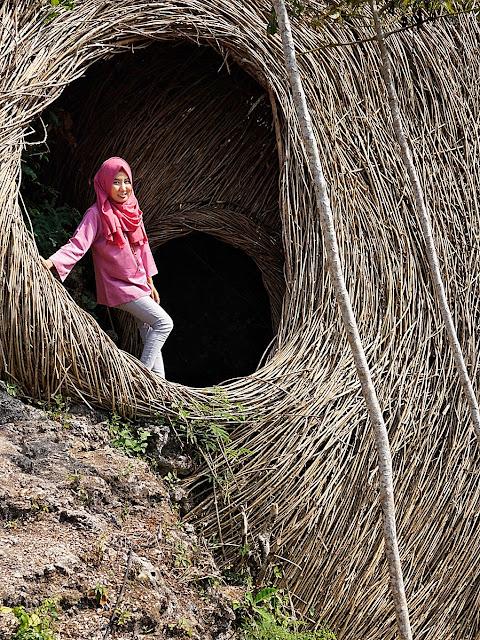 Geoforest Watu Payung Gunungkidul