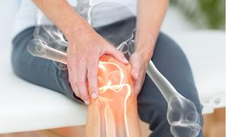 Can medicinal mushrooms help osteoporosis?