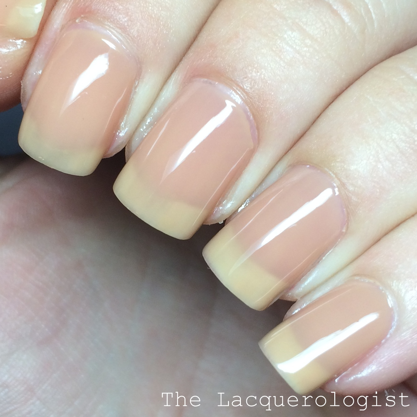 Sally hansen complete salon manicure fall 2015 designer for Salon complet but