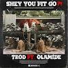 Trod – Shey You Fit Go?! ft Olamide