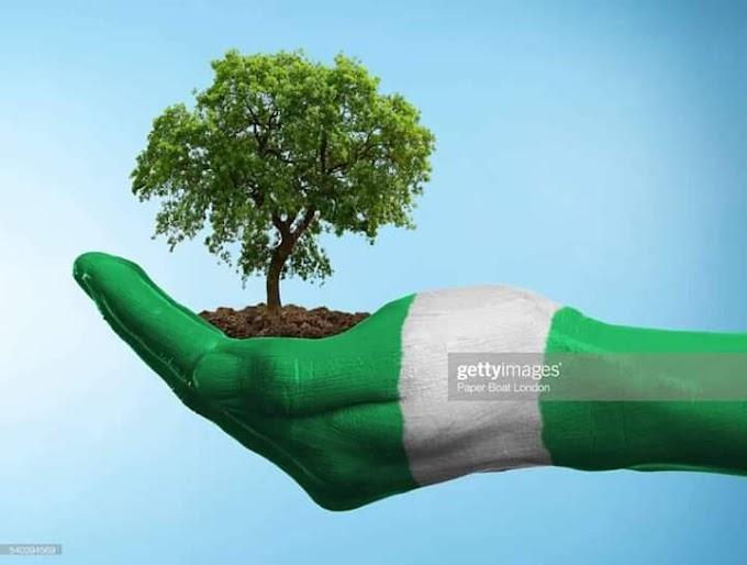 21ST CENTURY DEMOCRACY PRACTICE IN NIGERIA