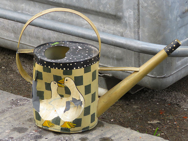 Watering can, Via Crispi, Livorno