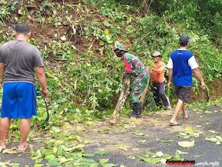 Antisipasi Ranting Pohon Tumbang Anggota Koramil Bersama Masyarakat Lakukan Pemangkasan