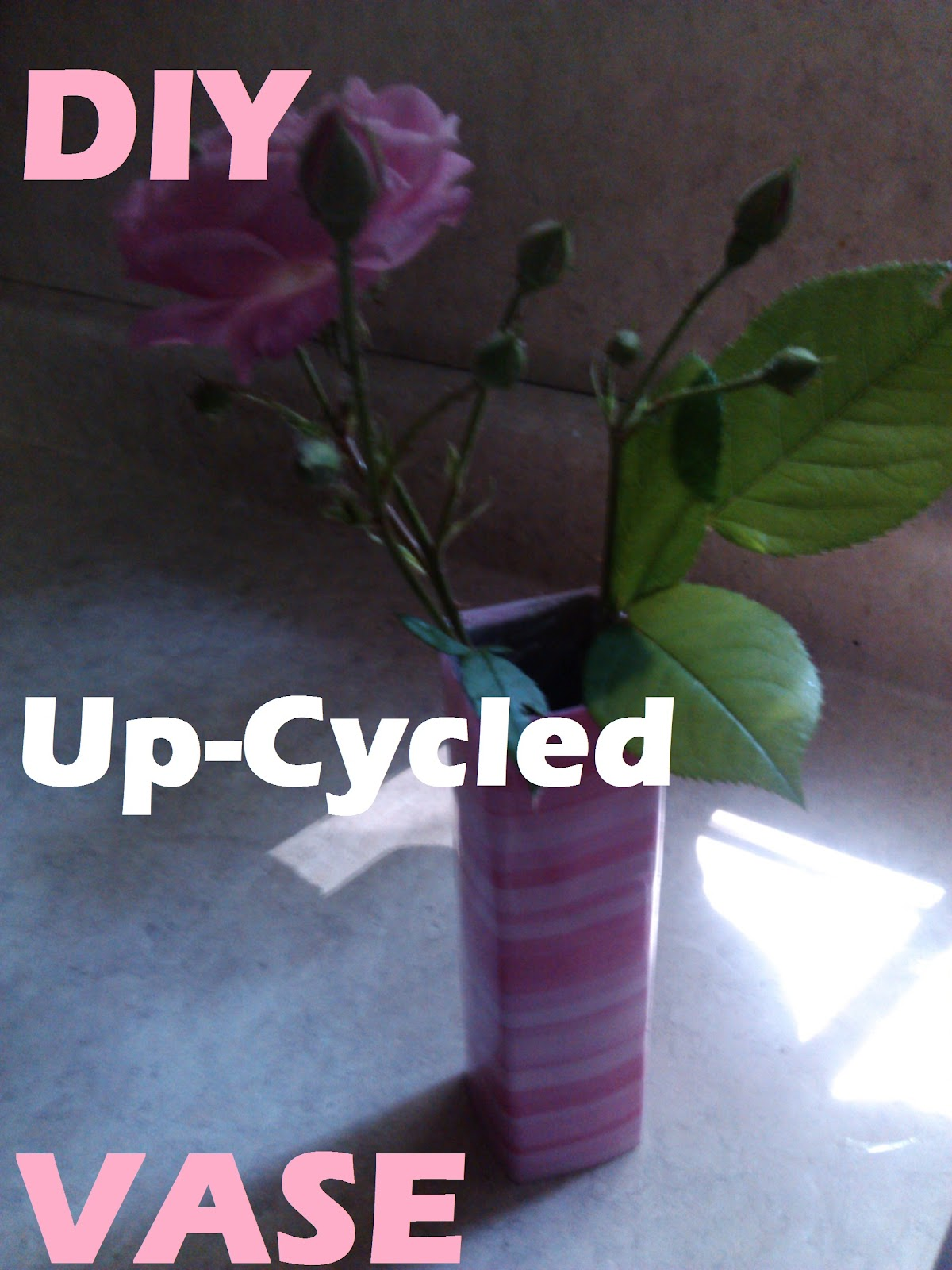 My American Confessions & My American Confessions: Friday: DIY Up-Cycled Paper Towel Roll into ...