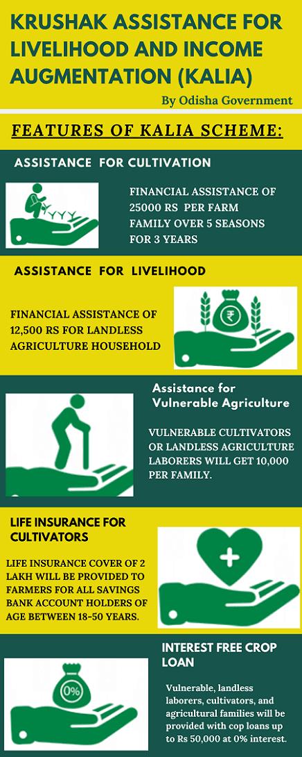 Kalia Yojana Infographic